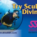Try Scuba Diving | Dive Newquay, Cornwall
