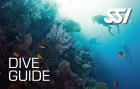 Dive Guide | Dive Newquay, Cornwall