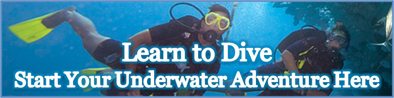 dive_newquay_homepage_button_learn_to_dive