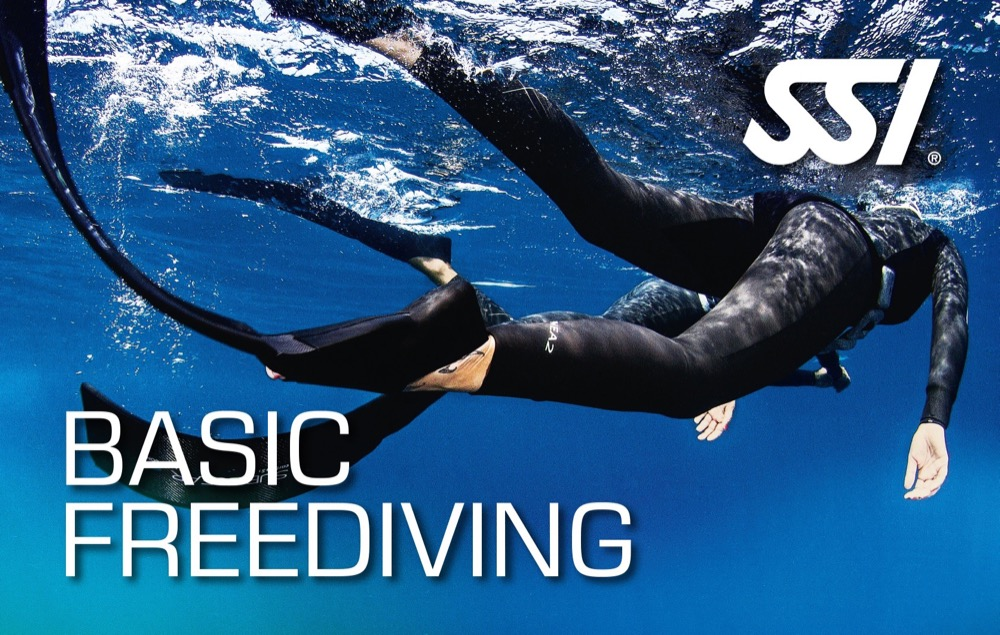Basic-Freediving