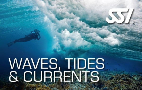 SSI Waves Tides and Currents