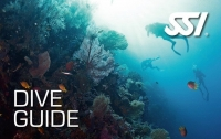 SSI DIve Guide