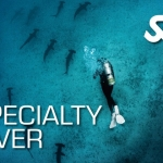 speciality-diver-ssi