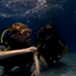 dive-newquay-education-004